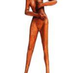 statua(18)
